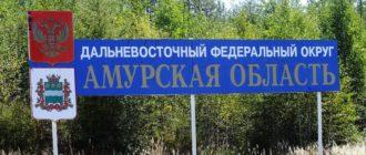 Пособия на ребенка в Амурской области