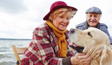Льготы пенсионерам по выслуге лет