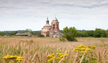 Социальная поддержка в Курской области