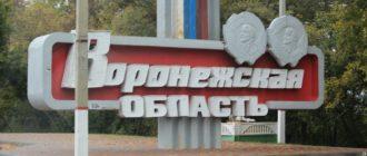 Пособия на ребенка в Воронежской области
