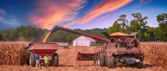 Как получить грант начинающему фермеру на развитие